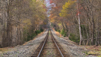 разное, транспортные средства и магистрали, пейзаж, осень, железная, дорога, лес, деревья