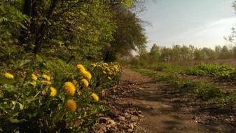 природа, дороги, тракт