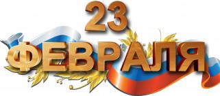 праздничные, день защитника отечества, ветка, флаг