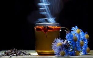 еда, напитки,  Чай, пар, цикорий, чай, шиповник