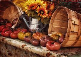 обои для рабочего стола 2048x1455 еда, помидоры, урожай