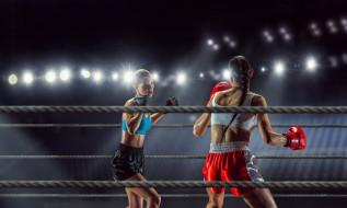 спорт, бокс, девушки, взгляд, фон