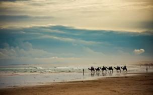 караван, берег, море, песок, тучи