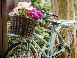 корзина, ромашки, герберы, велосипед