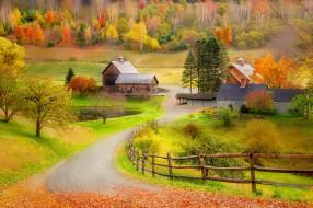 города, - пейзажи, забор, природа, лес, деревья, дома, осень