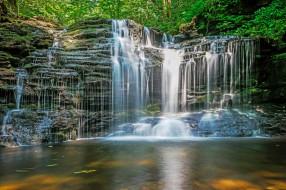 лес, река, водопад
