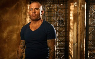 dominic purcell, lincoln burrows