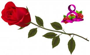 праздничные, международный женский день - 8 марта, фон, цветы, роза