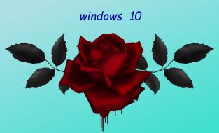 обои для рабочего стола 2548x1547 компьютеры, windows  10, фон, логотип