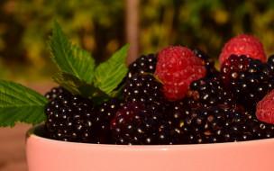 обои для рабочего стола 2880x1800 еда, фрукты,  ягоды, ежевика, лето, природа, чашка, сочно, много, макро, миска, пиала, блеск, зелень, вкусно, малина, ягоды, листья