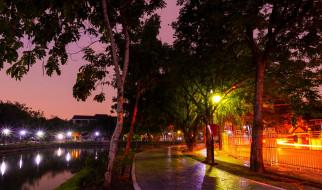 таиланд, города, - огни ночного города, фонари, аллея, деревья
