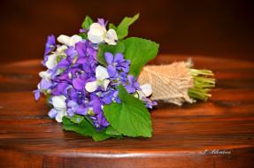 цветы, лепестки, фиалка, букет