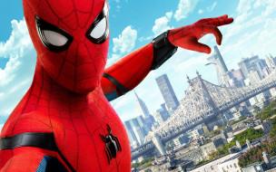 кино фильмы, spider-man,  homecoming, homecoming