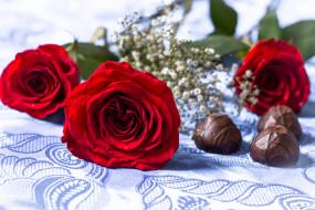 еда, конфеты,  шоколад,  сладости, роза, цветение, лепестки, цвет, цветы