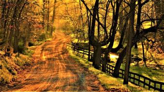 осень, проселочная, дорога