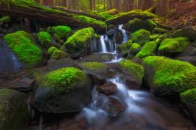 природа, водопады, leaves, waterfall, осень, листья, вода, поток, водопад, autumn, water, stream