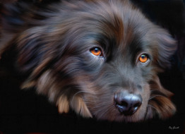 рисованное, животные, картина, собака, печаль