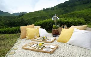 пикник, сервировка, приборы, ковер, подушки