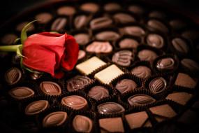 еда, конфеты,  шоколад,  сладости, роза, цветок, шоколад, ассорти, набор