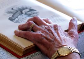 часы, кольцо, рука, книга, старческая, морщины