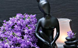 разное, ракушки,  кораллы,  декоративные и spa-камни, цветы, статуэтка, фигурка, колокольчики, женщина, лампа, камни