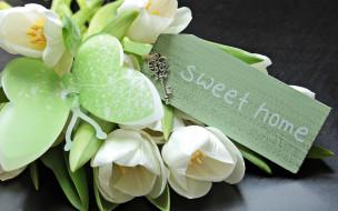 обои для рабочего стола 2880x1800 цветы, тюльпаны, бабочка, табличка, ключ