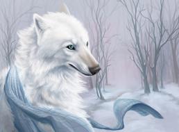 снег, шарф, деревья, белый волк