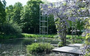 обои для рабочего стола 1920x1195 цветы, цветущие деревья ,  кустарники, водоем