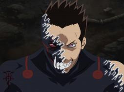 аниме, fullmetal alchemist, взгляд
