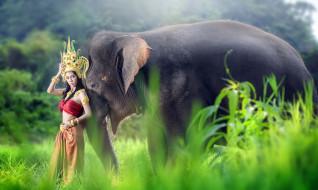 девушки, -unsort , азиатки, девушка, слон, азиатка