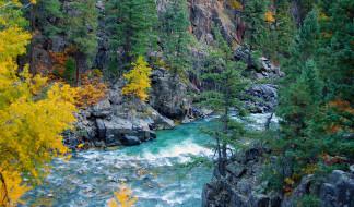 обои для рабочего стола 2048x1201 природа, реки, озера, река, лес