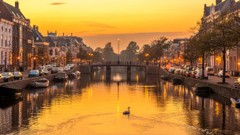 мост, Нидерланды, вечер, дома, река, Харлем, лебедь