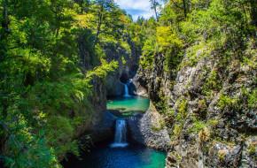 река, лес, водопад