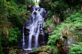 водопад, лес, река
