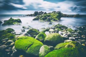 камни, водоем