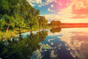 отражение, деревья, трава, водоем