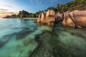 пальмы, камни, море, пляж, побережье