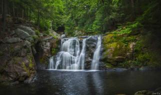 водопад, деревья, лес