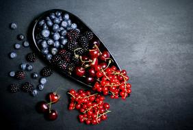 ежевика, смородина, черника, ягоды
