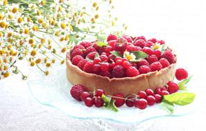 ромашки, ягоды, цветы, малина, ежевика, лето, пирог, смородина