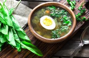 миска, яйцо, зеленый борщ, щавель