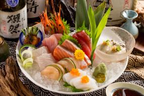 ассорти, лед, моллюски, икра, морепродукты, рыба