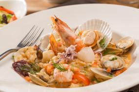 креветка, морепродукты, моллюски