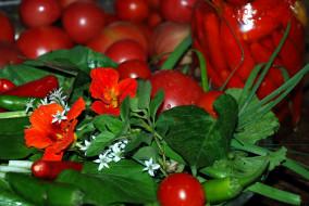 еда, овощи, перец, настурция, помидоры, зелень