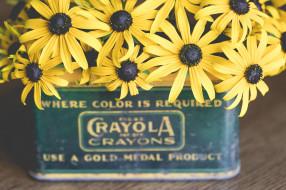 желтый, лепестки, ваза, цветы