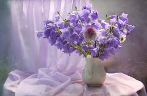 лето, натюрморт, цветы, колокольчики
