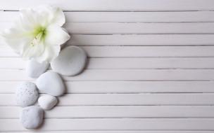 доски, камни, цветок