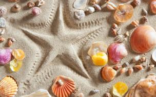 ракушки, звезда, песок