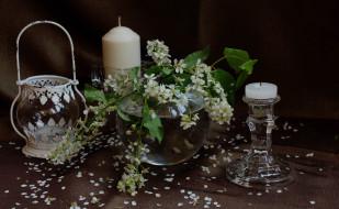 натюрморт, ветка, черемуха, цветы, свечи, весна