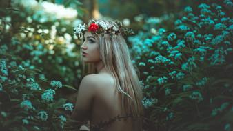 цветы, венок